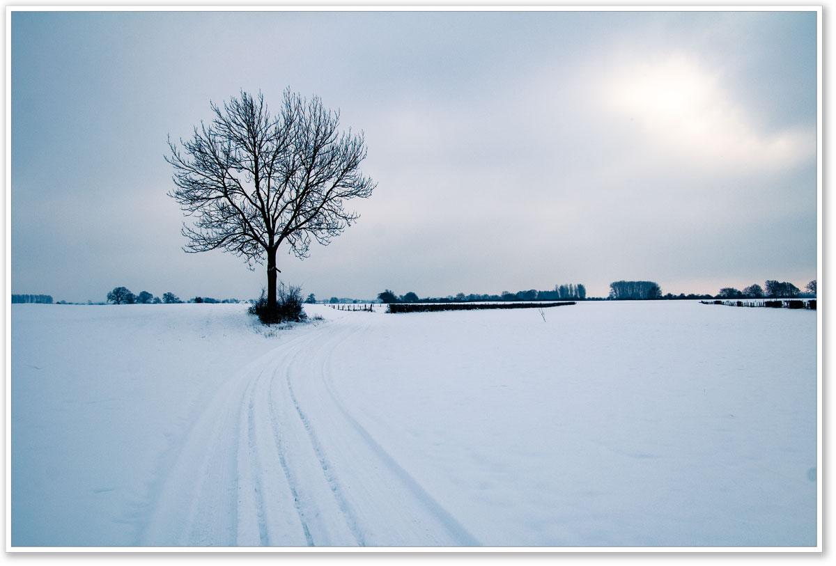 Spuren im Schnee im Dämmerlicht