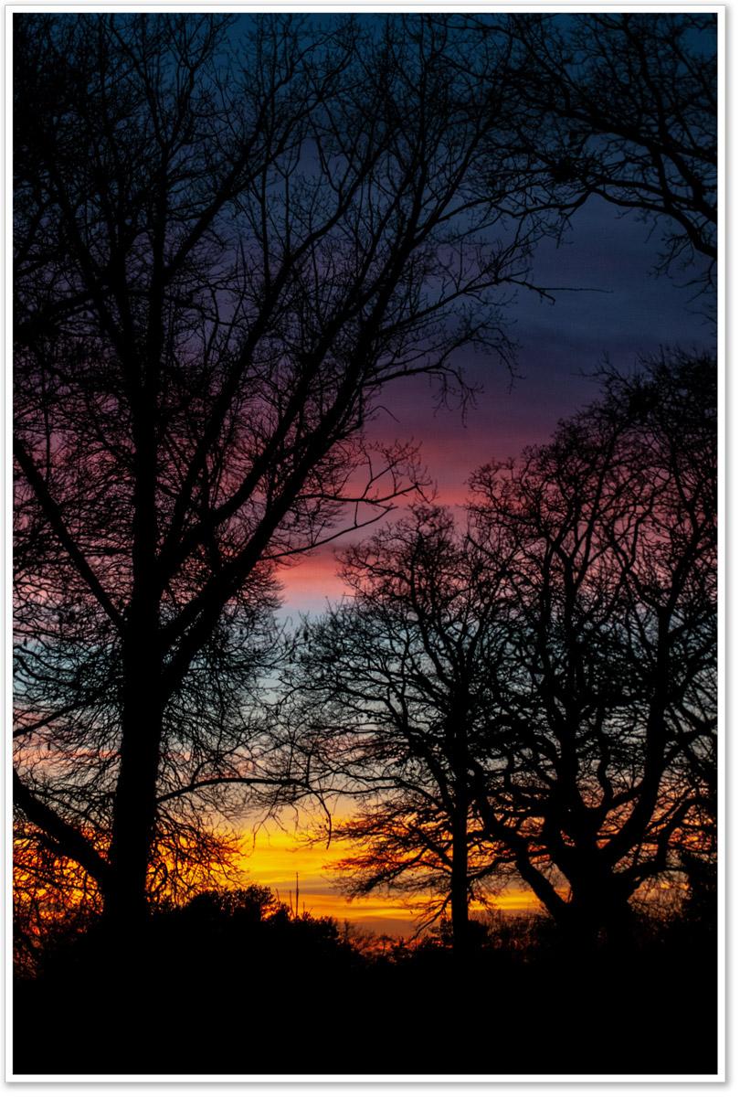 Abendhimmel über der Aller hinter Bäumen