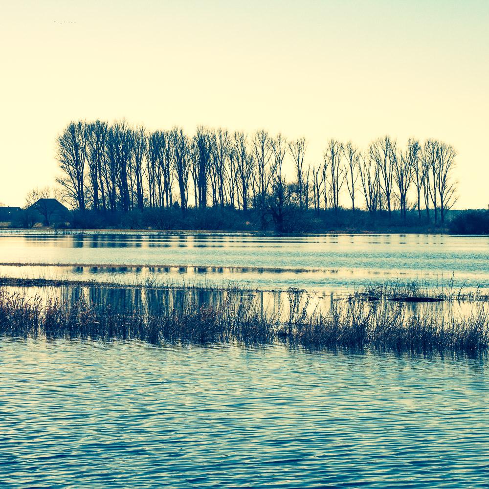 überschwemmte Wiesen an der Böhme